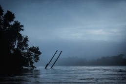 Kinabatangan river. Malaysian Borneo.